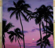 Рулонные жалюзи — на полотне закат и пальмы